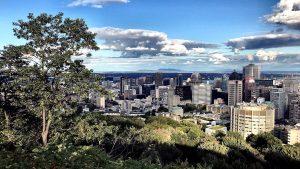 A bird's eye view of Montréal - IZZAT RIAZ